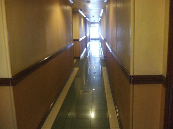 Paladin Hotel: hallway