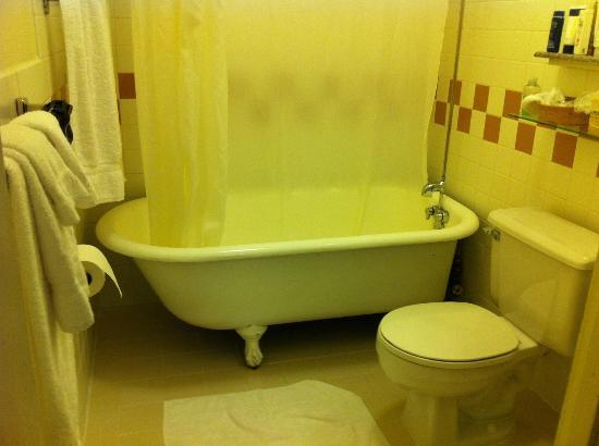 Baldwin Hotel: Bath Tub