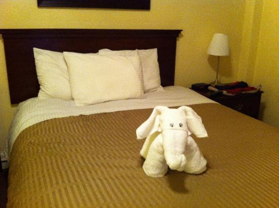 Baldwin Hotel: Elephant made from Towels