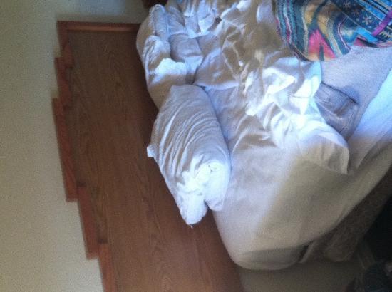 Dine Inn Motel: horrible bed/pillows