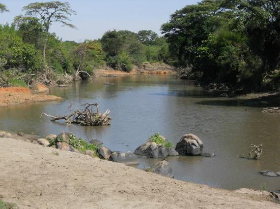 Serengeti National Park, Tanzânia: Grumeti river