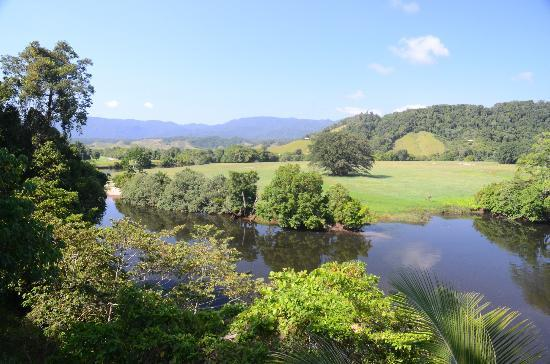 Daintree Village Bed and Breakfast: View from Verandah