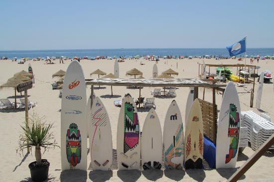 Image result for carcavelos surfing