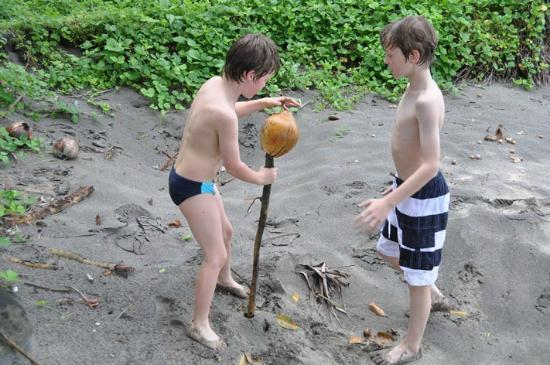 Coconuts Beach Club: Hulling coconuts on a walk