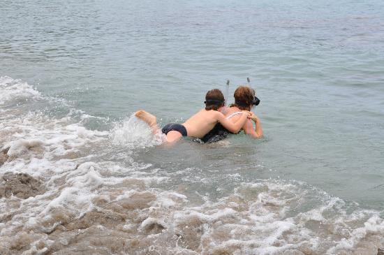 كوكوناتس بيتش كلوب آند ريزورت: Snorkelling in deeper waters at Black Sands beach 