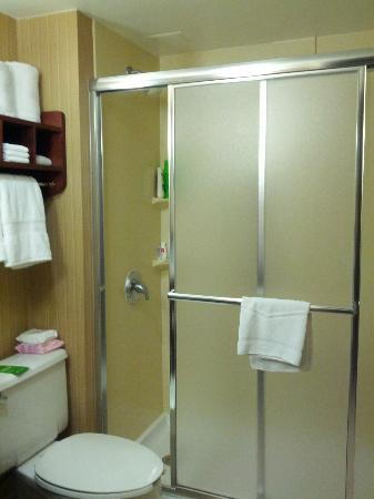 Hampton Inn Dallas / Addison: sliding doors for the shower