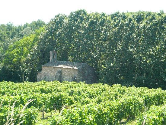 Cath U00e9drale Saint -vincent Viviers