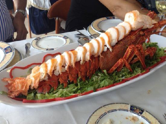 Arnuero, Spanyol: Excelente como cocinan la langosta