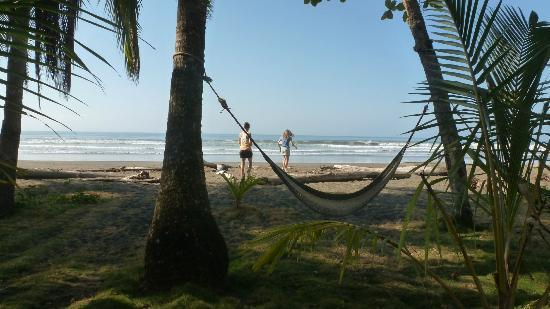 Clandestino Beach Resort: hammock at the sea