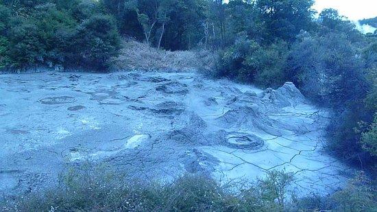 Te Puia: Boiling mud pool