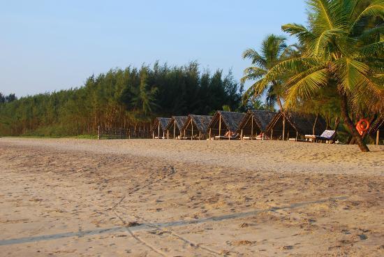 The Nattika Beach Resort: beach huts