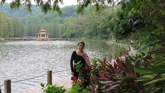 Hongfa Temple: Around the lake it created a great walkway