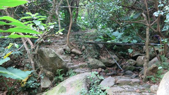 Hongfa Temple: Stein from the temple to the lake. It requires good shoes. We walked the whole trail, it took 4