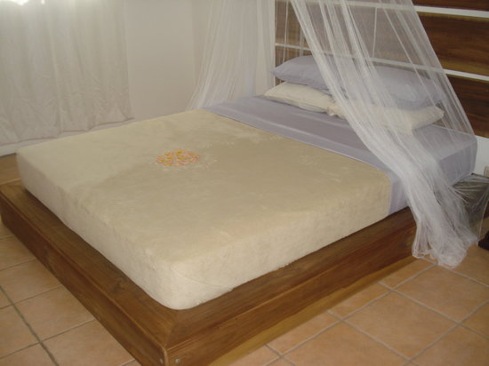 Coconut Love Beach House: Both of our apartments and our bungalow all have queen beds