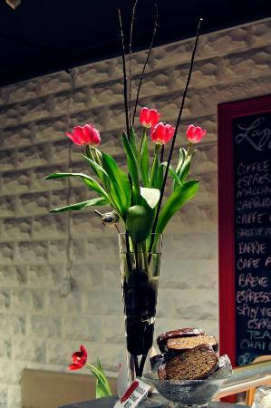Lazy Tulip Cafe: Cafe serving organic, fair trade coffee
