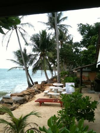 Treehouse Silent Beach : vid restaurangen