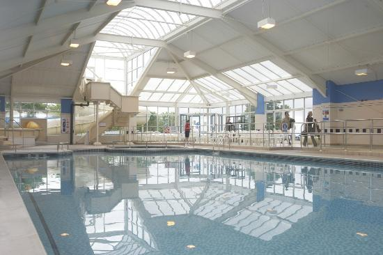Indoor swimming pool at parkdean torquay holiday park - Hotel in torquay with indoor swimming pool ...