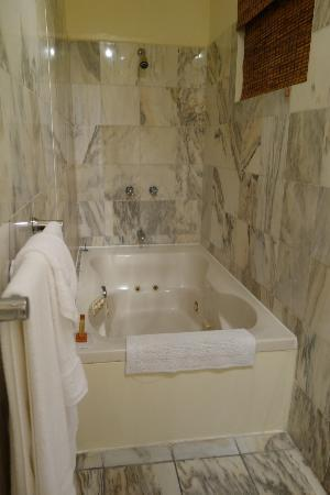 Coral Princess Hotel: The jacuzzi in our penthouse suite