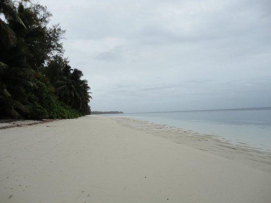 Desroches Island: the beach