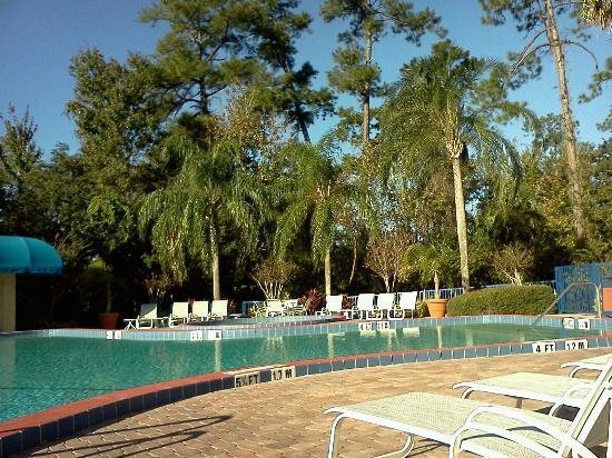 BEST WESTERN Lake Buena Vista Resort Hotel: Best Western LBV pool