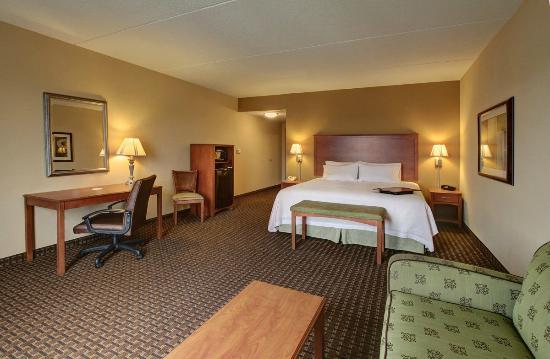 Hampton Inn Leesburg - Tavares: Our spacious king hotel room with work space