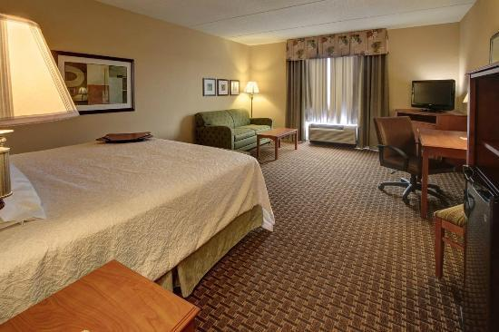 Hampton Inn Leesburg - Tavares: Our king study hotel rooms include a fold out sofa for extra sitting or sleeping space