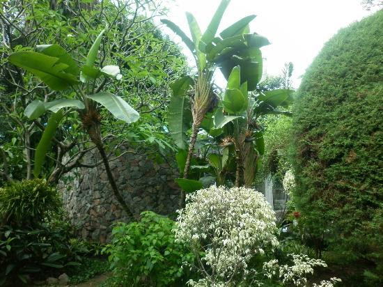 Hotel Villa Morra Suites: Jardín maravilloso