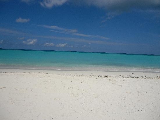 Villa Gaiarda: La spiaggia più vicina!!!