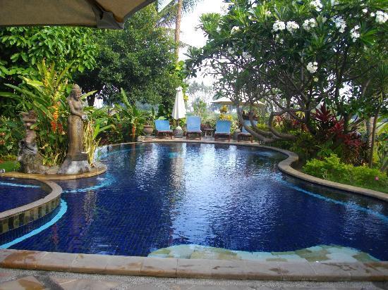 Sawah Lovina Bungalows: The swimmingpool of Sawah Lovina.