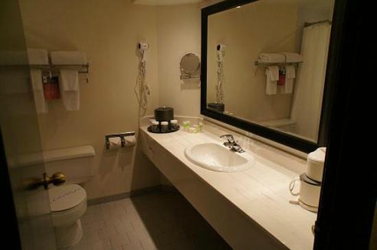 Hotel Ruby Foo's : バスルーム