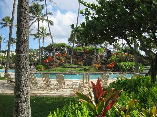 Kauai Beach Resort: Pool area and landscaping