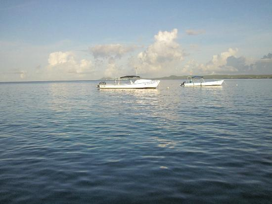 Sand Dollar Condominiums: Dive boats