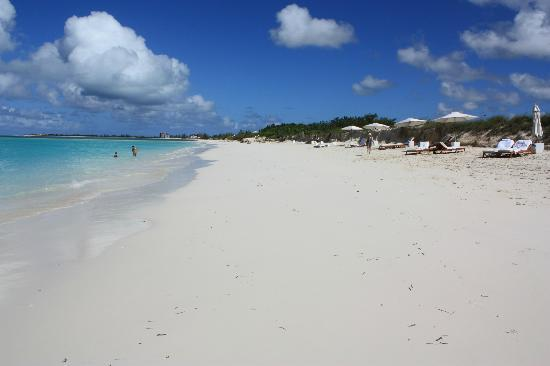‪‪COMO Parrot Cay, Turks and Caicos‬: The beach at the resort