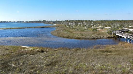 Big Lagoon State Park: another view