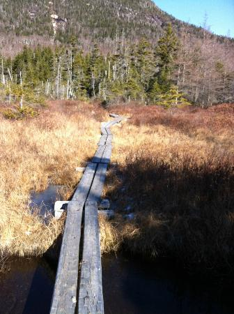 Lonesome Lake Hut: The trail around the lake