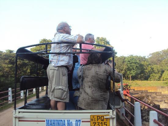 New Sunshine Safari: on the way