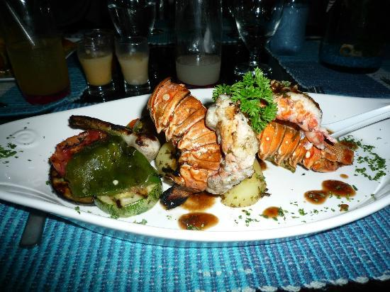 Restaurante El Marlin : Lobster