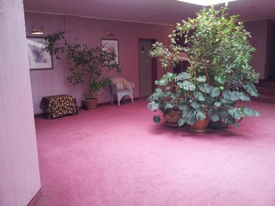 Villa Ratingen: upstairs hallway in the hotel