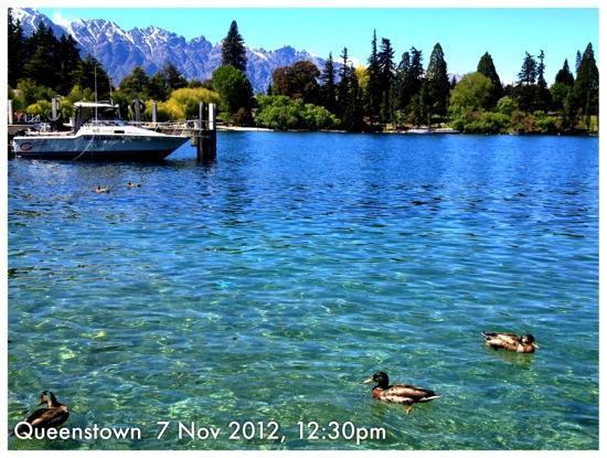 Lake Wakatipu: Lakefront