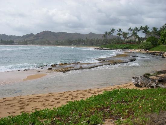 Courtyard Kaua'i at Coconut Beach: KAPAA BEACH