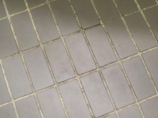 Hotel Consigli: Dirty Bathroom Floor