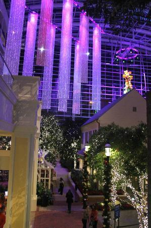 Gaylord National Resort & Convention Center: Shimmery Curtains of Light