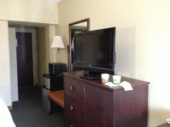 Hampton Inn Pittsburgh University/Medical Center: TV