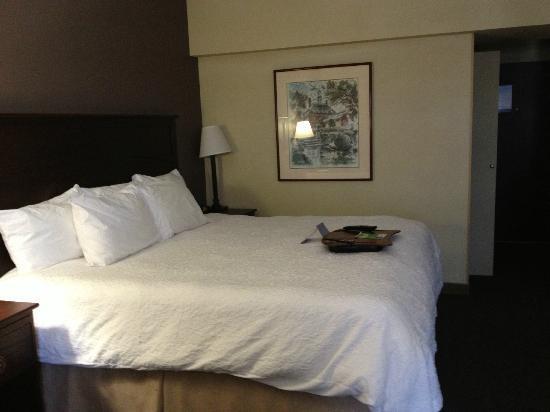 Hampton Inn Pittsburgh University/Medical Center : Bed