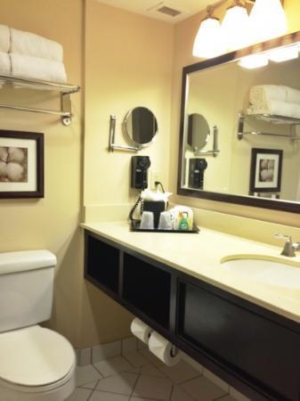 Belle of Baton Rouge Casino & Hotel: Bathroom