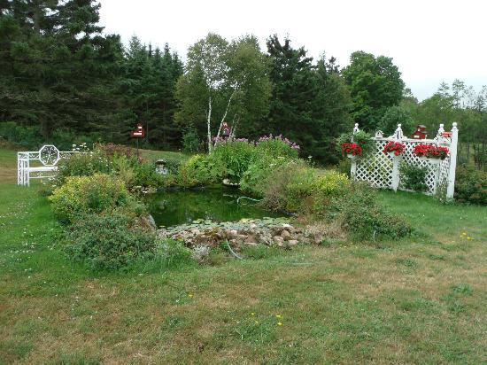 Clinton, Canada: The back gardens