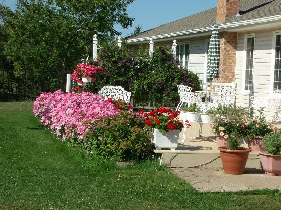 Clinton, Kanada: Beautiful flowers surround this B&B
