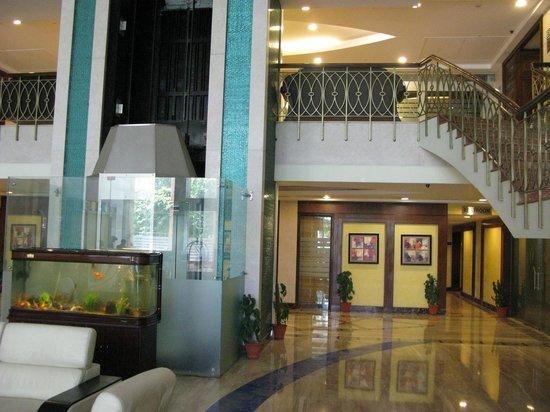 Parkland Retreat Hotel: Лобби