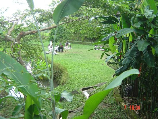 Bali Eco Stay Bungalows: Martial arts lessons, near Buddah bungalow.