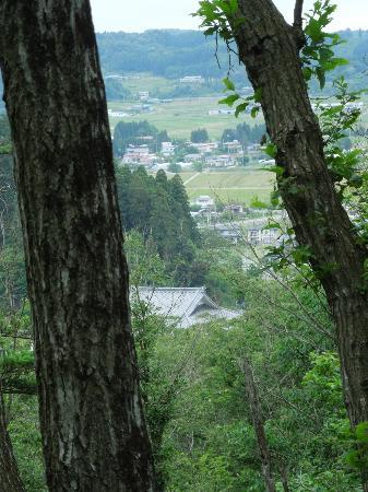 Mt.Kinkei: 頂上から見えるのはこれくらい